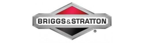 Membrane BRIGGS STRATTON